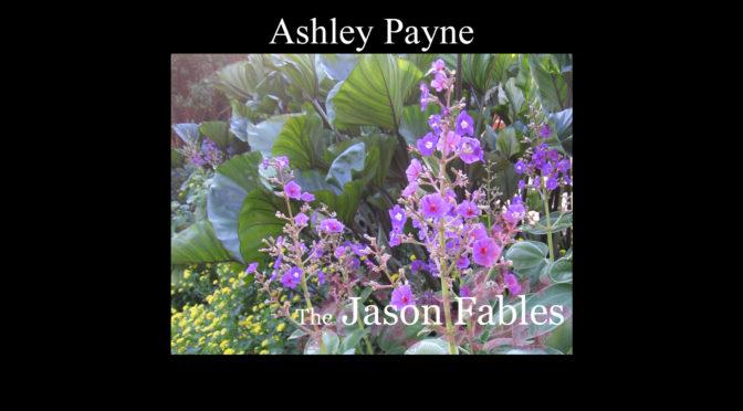 Ashley Payne